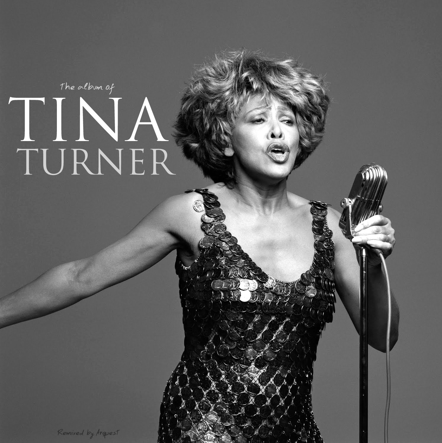 the album of tina turner  double mixed cd created by